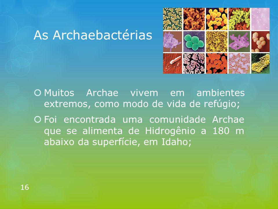  Muitos Archae vivem em ambientes extremos, como modo de vida de refúgio;  Foi encontrada uma comunidade Archae que se alimenta de Hidrogênio a 180