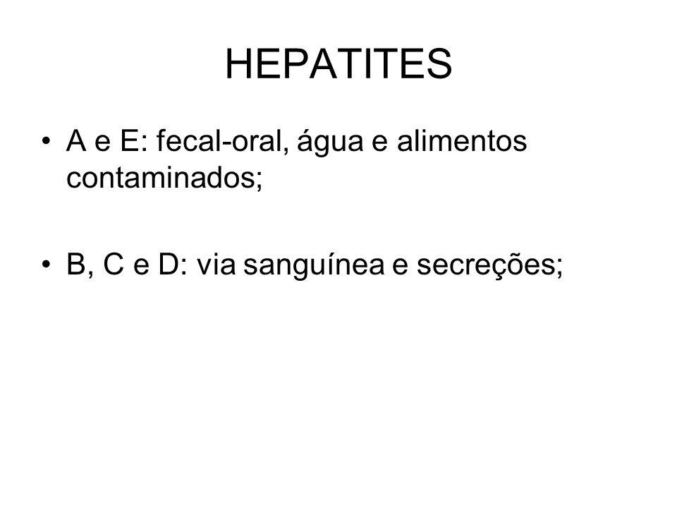 HEPATITES A e E: fecal-oral, água e alimentos contaminados; B, C e D: via sanguínea e secreções;