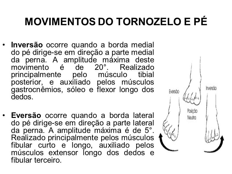 Inversão ocorre quando a borda medial do pé dirige-se em direção a parte medial da perna. A amplitude máxima deste movimento é de 20°. Realizado princ