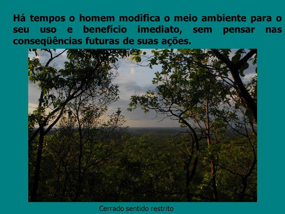 Há tempos o homem modifica o meio ambiente para o seu uso e benefício imediato, sem pensar nas conseqüências futuras de suas ações. Cerrado sentido re