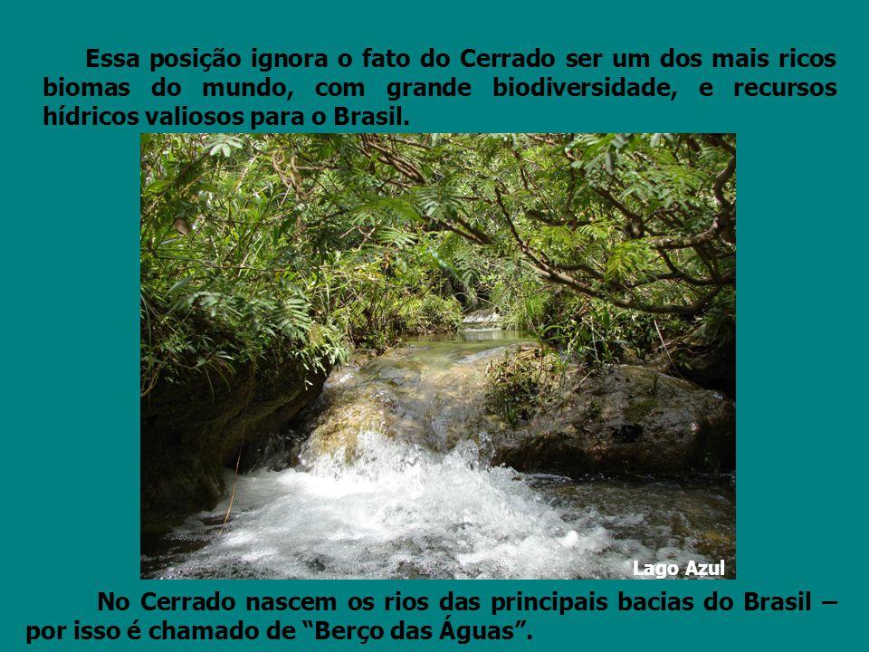 Essa posição ignora o fato do Cerrado ser um dos mais ricos biomas do mundo, com grande biodiversidade, e recursos hídricos valiosos para o Brasil. No