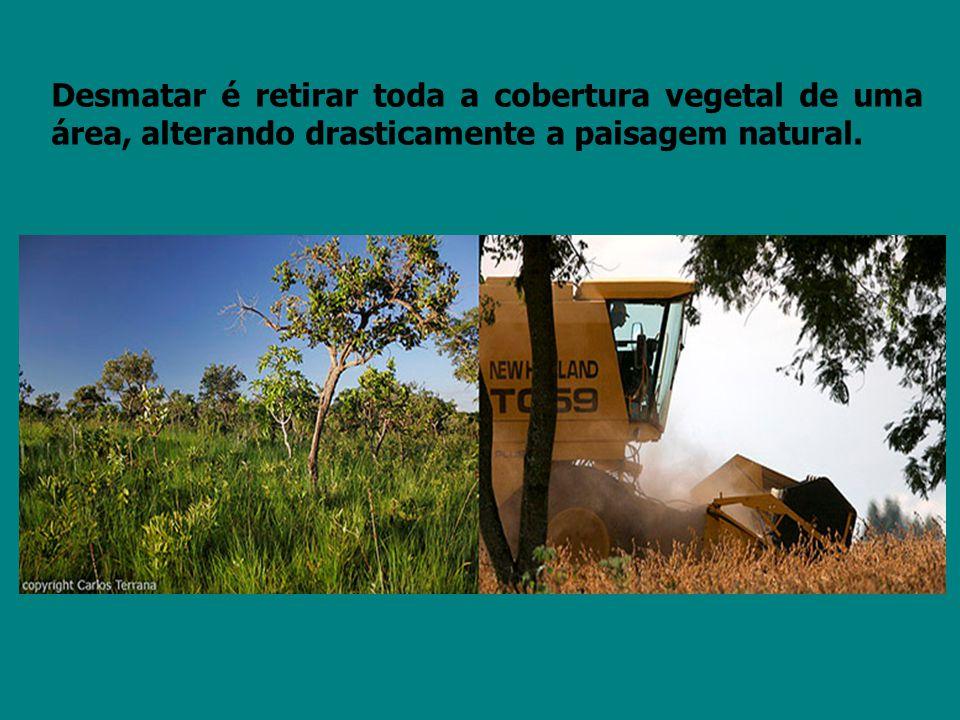 O homem pratica o desmatamento com a finalidade de comercializar madeira, abrir espaço para a urbanização, a construção de habitações, indústrias, hidroelétricas, bem como abrir espaço para a agricultura e a pecuária, com a implantação de pastagens para gado e lavouras.