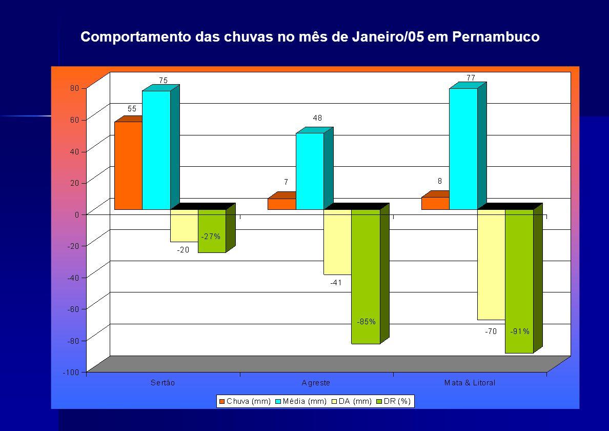 Comportamento das chuvas no mês de Janeiro/05 em Pernambuco