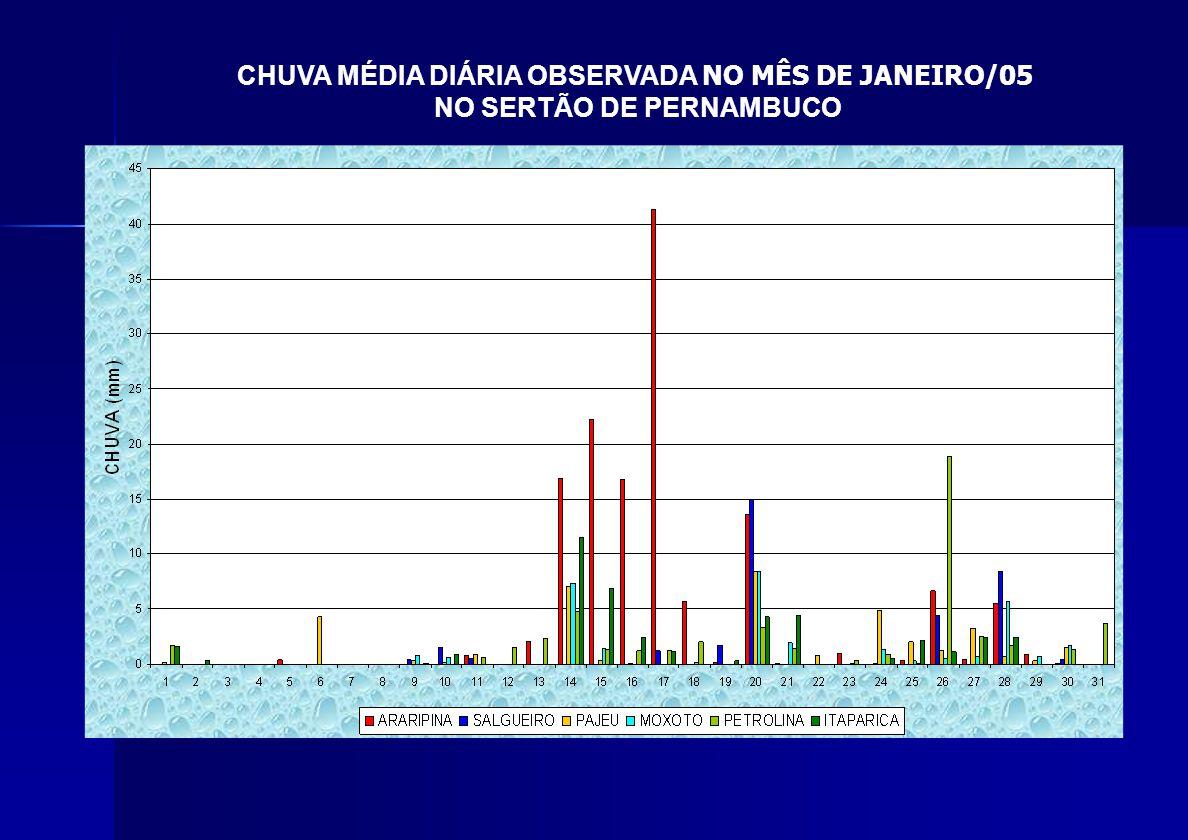 CHUVA MÉDIA DIÁRIA OBSERVADA NO MÊS DE JANEIRO/05 NO SERTÃO DE PERNAMBUCO