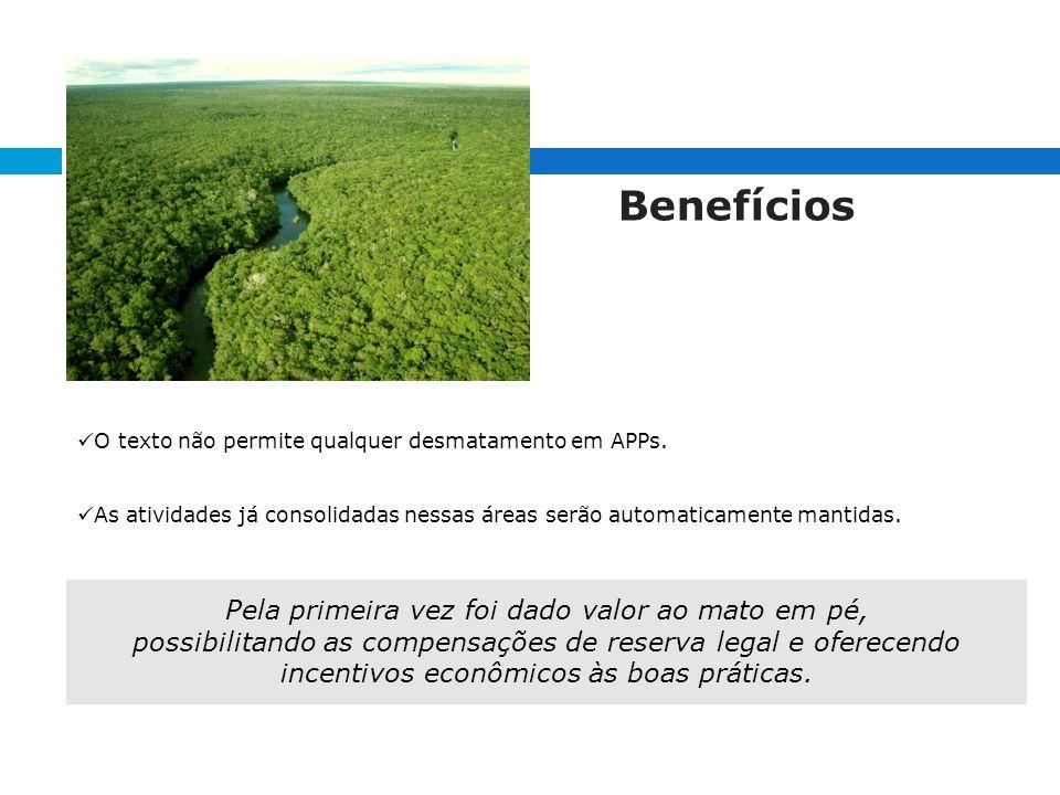 Benefícios O texto não permite qualquer desmatamento em APPs.