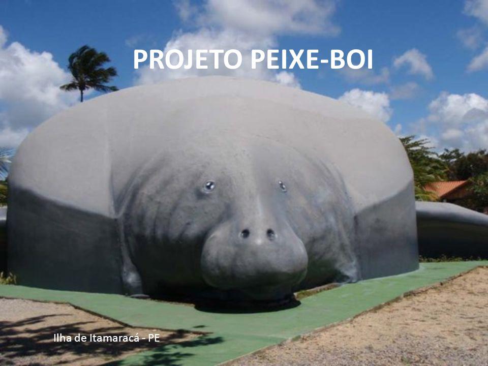 Ilha de Itamaracá - PE Dando proteção ao porto, observa-se a presença de canhões de ferro e de bronze.