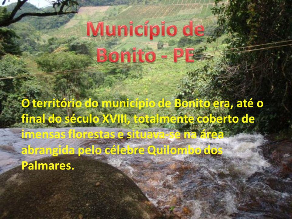 O território do município de Bonito era, até o final do século XVIII, totalmente coberto de imensas florestas e situava-se na área abrangida pelo célebre Quilombo dos Palmares.