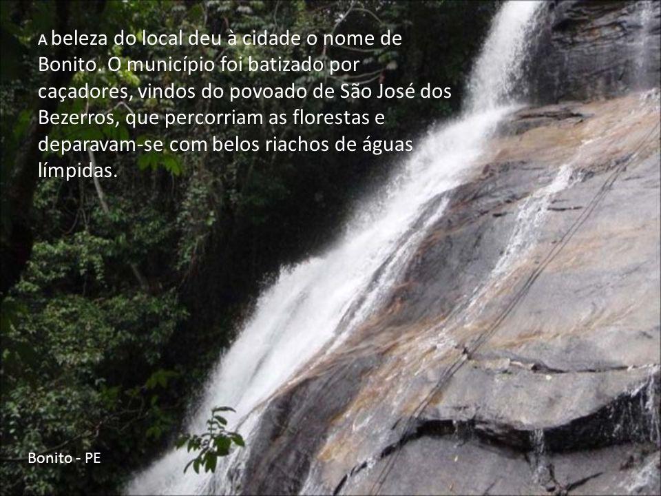 O território do município de Bonito era, até o final do século XVIII, totalmente coberto de imensas florestas e situava-se na área abrangida pelo céle