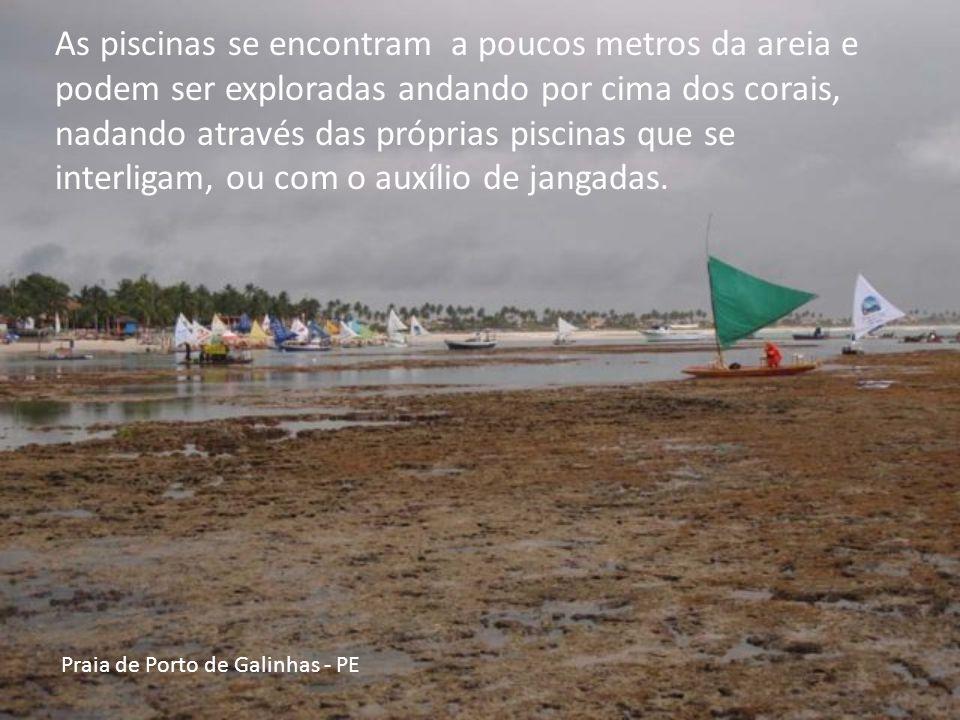 Praia de Porto de Galinhas - PE As piscinas se encontram a poucos metros da areia e podem ser exploradas andando por cima dos corais, nadando através das próprias piscinas que se interligam, ou com o auxílio de jangadas.