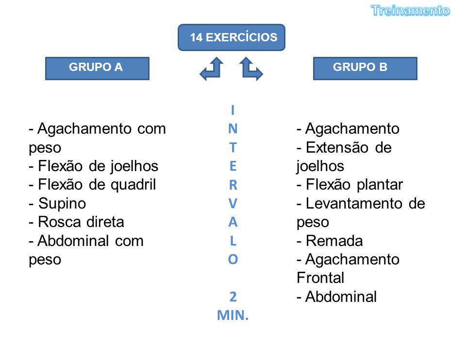 14 EXERCÍCIOS GRUPO AGRUPO B - Agachamento com peso - Flexão de joelhos - Flexão de quadril - Supino - Rosca direta - Abdominal com peso - Agachamento