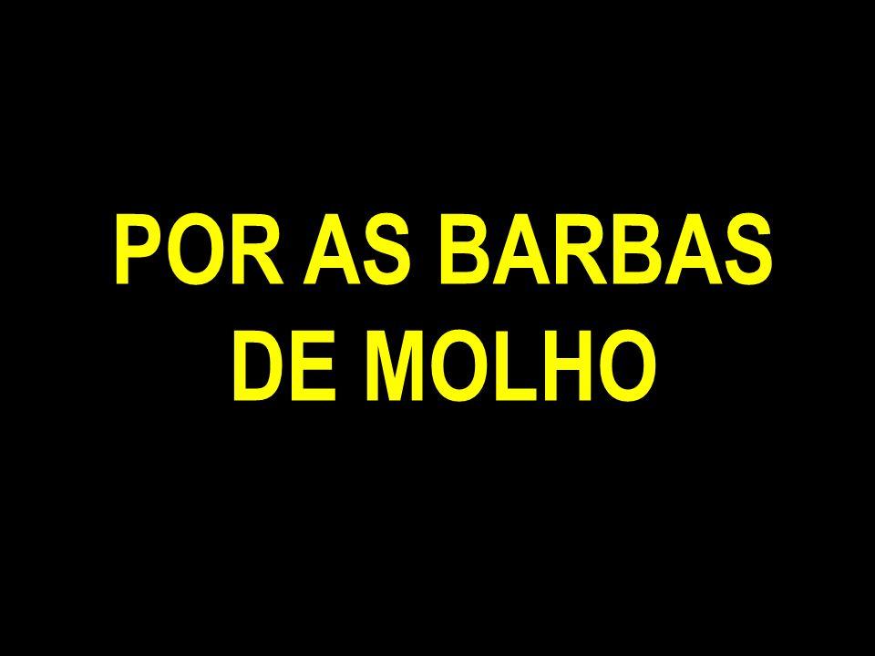 POR AS BARBAS DE MOLHO