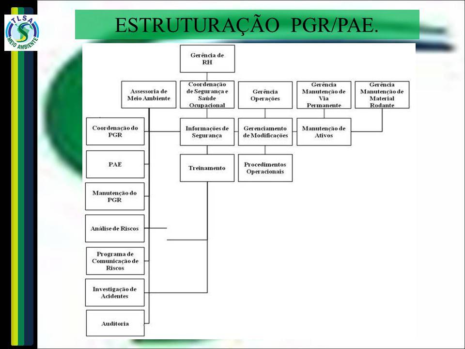 ESTRUTURAÇÃO PGR/PAE.
