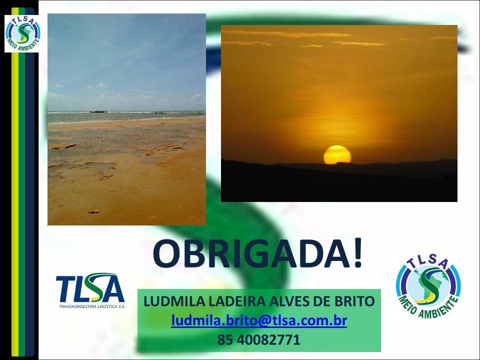 LUDMILA LADEIRA ALVES DE BRITO ludmila.brito@tlsa.com.br 85 40082771 OBRIGADA!