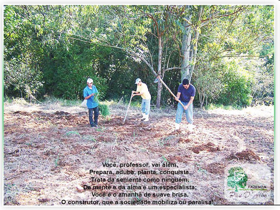 Assemelha-se ao pesado arado, Que remove a terra, prepara o plantio, Joga-se o grão adubado, Que vencerá o inverno e o estio, Com a chuva, a colheita