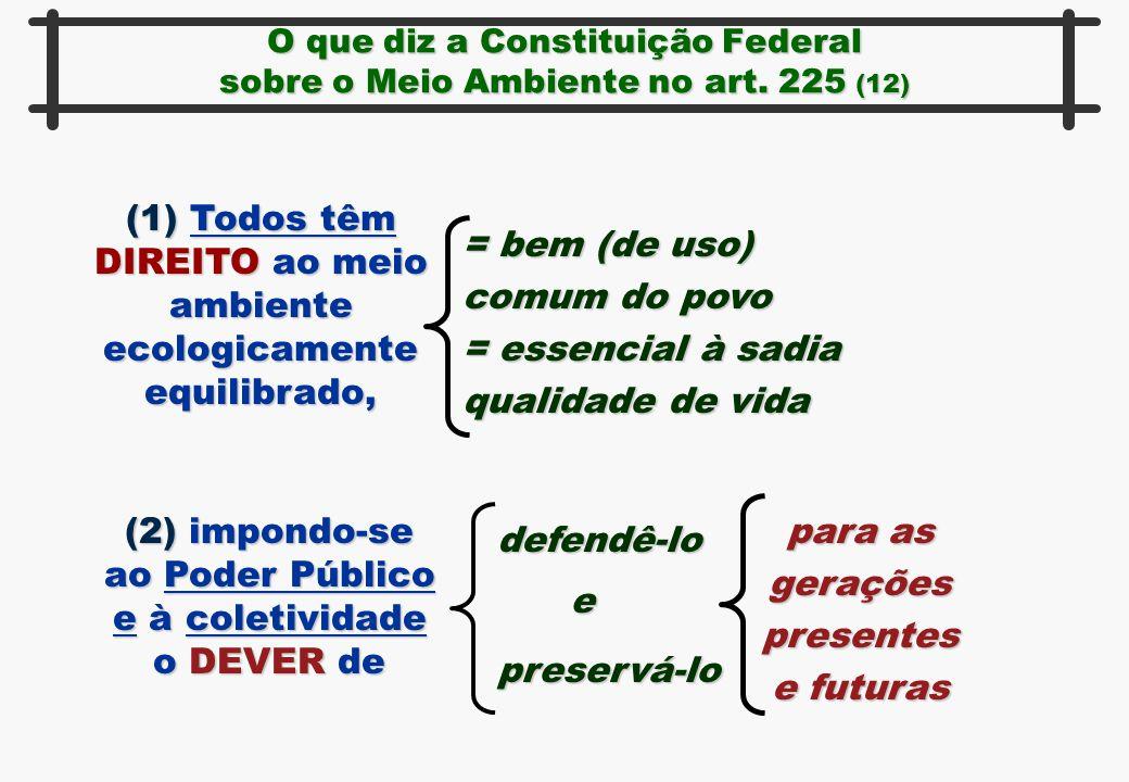 O que diz a Constituição Federal sobre o Meio Ambiente no art. 225 (12) (1) Todos têm DIREITO ao meio ambiente ecologicamente equilibrado, = bem (de u