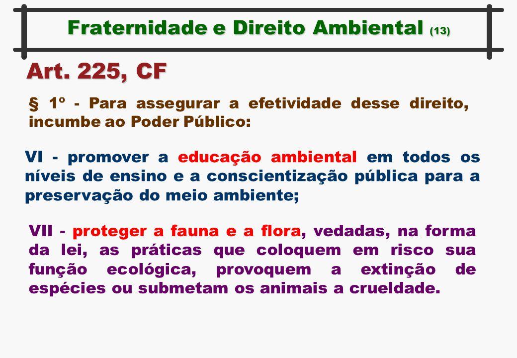 Fraternidade e Direito Ambiental (13) Art. 225, CF § 1º - Para assegurar a efetividade desse direito, incumbe ao Poder Público: VI - promover a educaç