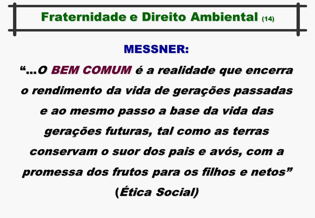 """MESSNER: """"...O BEM COMUM é a realidade que encerra o rendimento da vida de gerações passadas e ao mesmo passo a base da vida das gerações futuras, tal"""