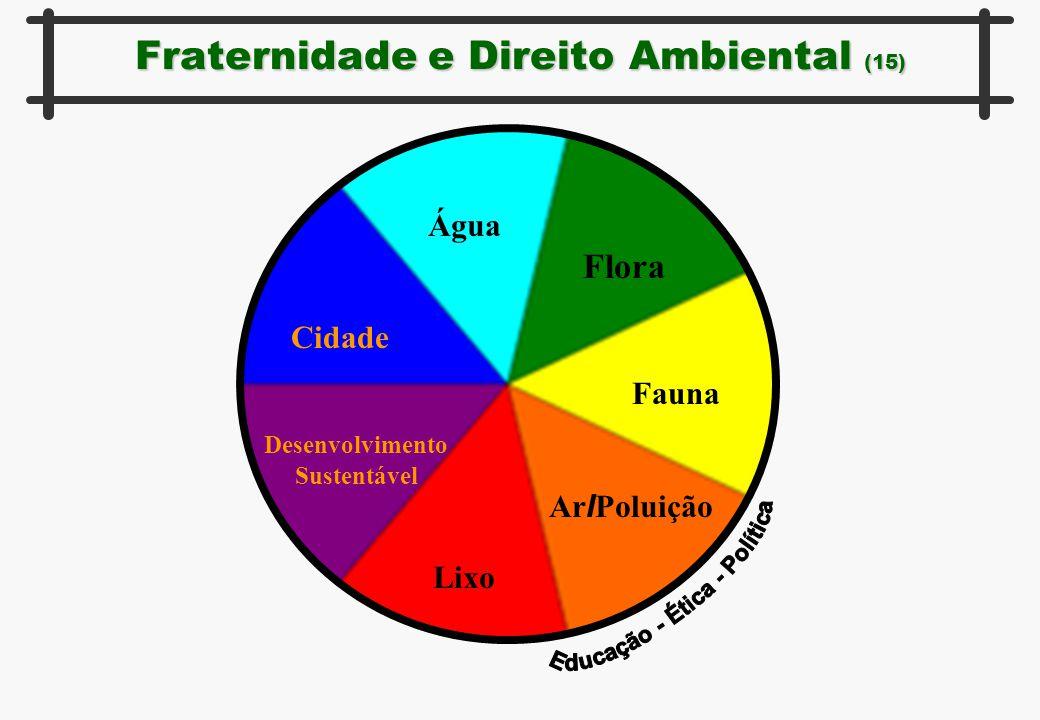 Fraternidade e Direito Ambiental (15) Água Flora Fauna Ar I Poluição Lixo Desenvolvimento Sustentável Cidade
