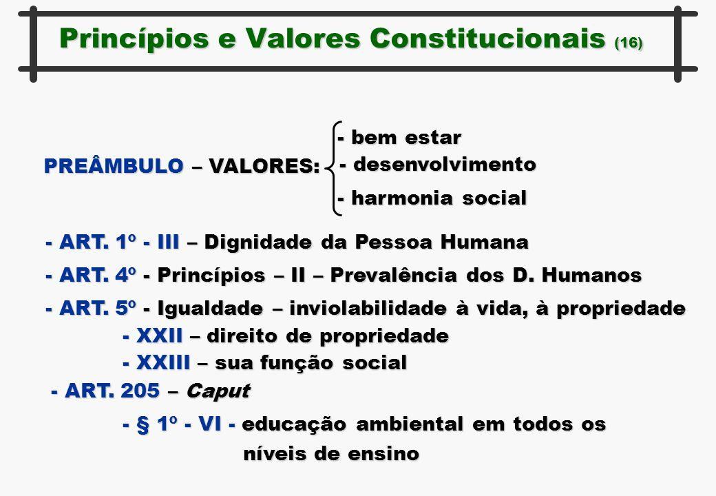 Princípios e Valores Constitucionais (16) PREÂMBULO – VALORES: - bem estar - desenvolvimento - harmonia social - ART. 1º - III – Dignidade da Pessoa H