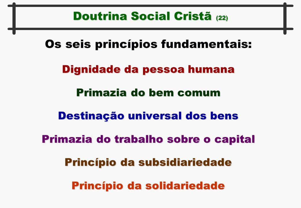 Os seis princípios fundamentais: Dignidade da pessoa humana Primazia do bem comum Destinação universal dos bens Primazia do trabalho sobre o capital P