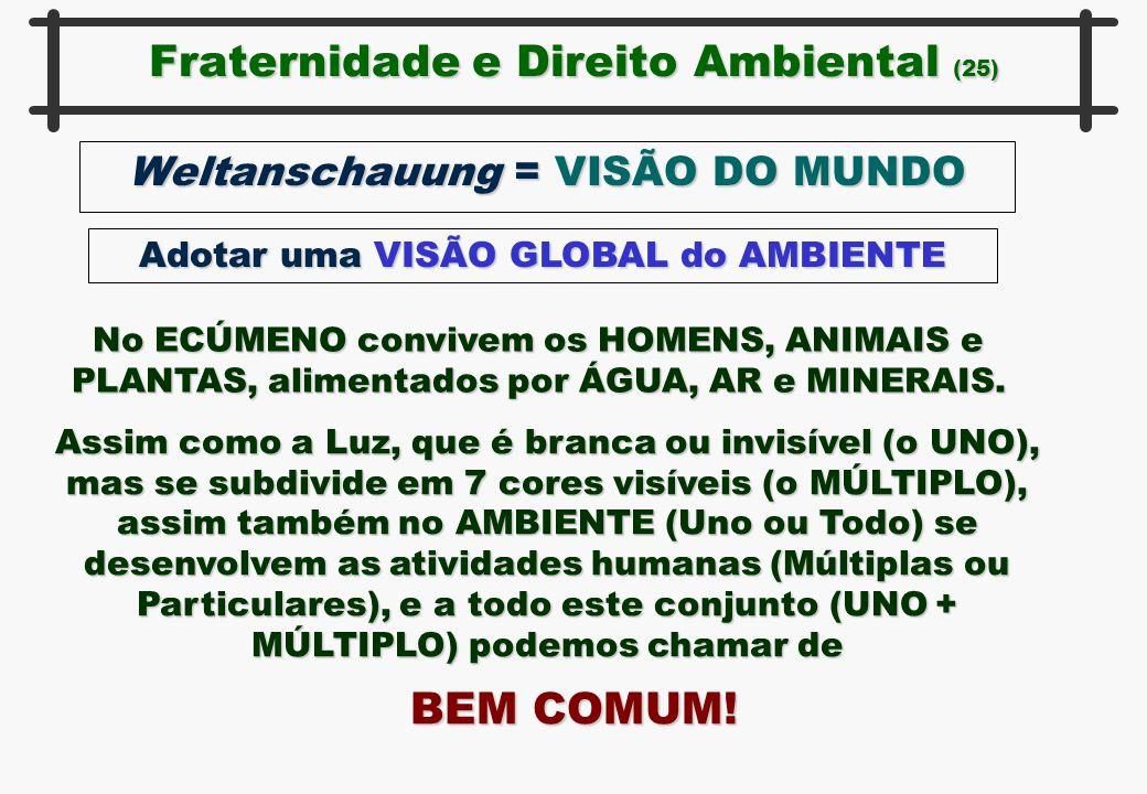 Fraternidade e Direito Ambiental (25) Weltanschauung = VISÃO DO MUNDO Adotar uma VISÃO GLOBAL do AMBIENTE No ECÚMENO convivem os HOMENS, ANIMAIS e PLA
