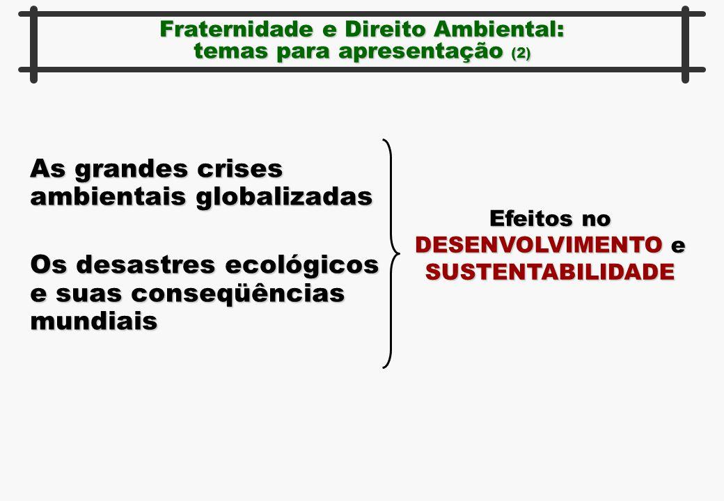 Fraternidade e Direito Ambiental: temas para apresentação (2) As grandes crises ambientais globalizadas Os desastres ecológicos e suas conseqüências m