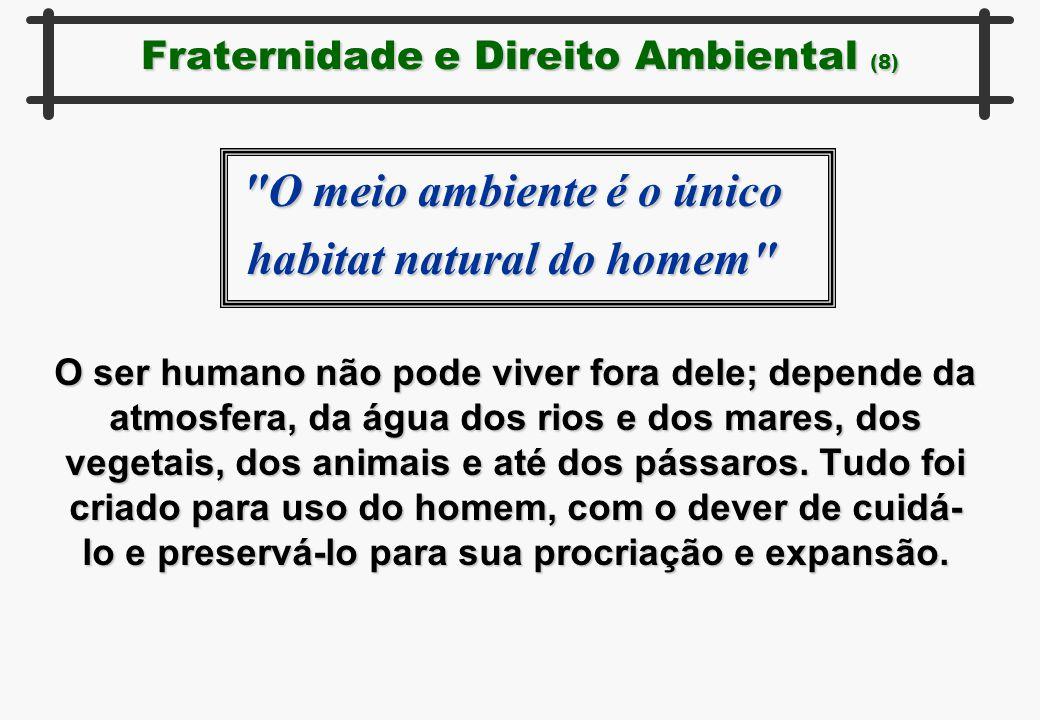 Fraternidade e Direito Ambiental (8) O ser humano não pode viver fora dele; depende da atmosfera, da água dos rios e dos mares, dos vegetais, dos anim