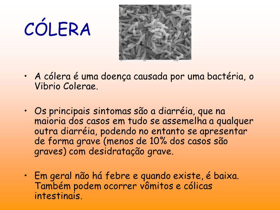 CÓLERA A cólera é uma doença causada por uma bactéria, o Vibrio Colerae.