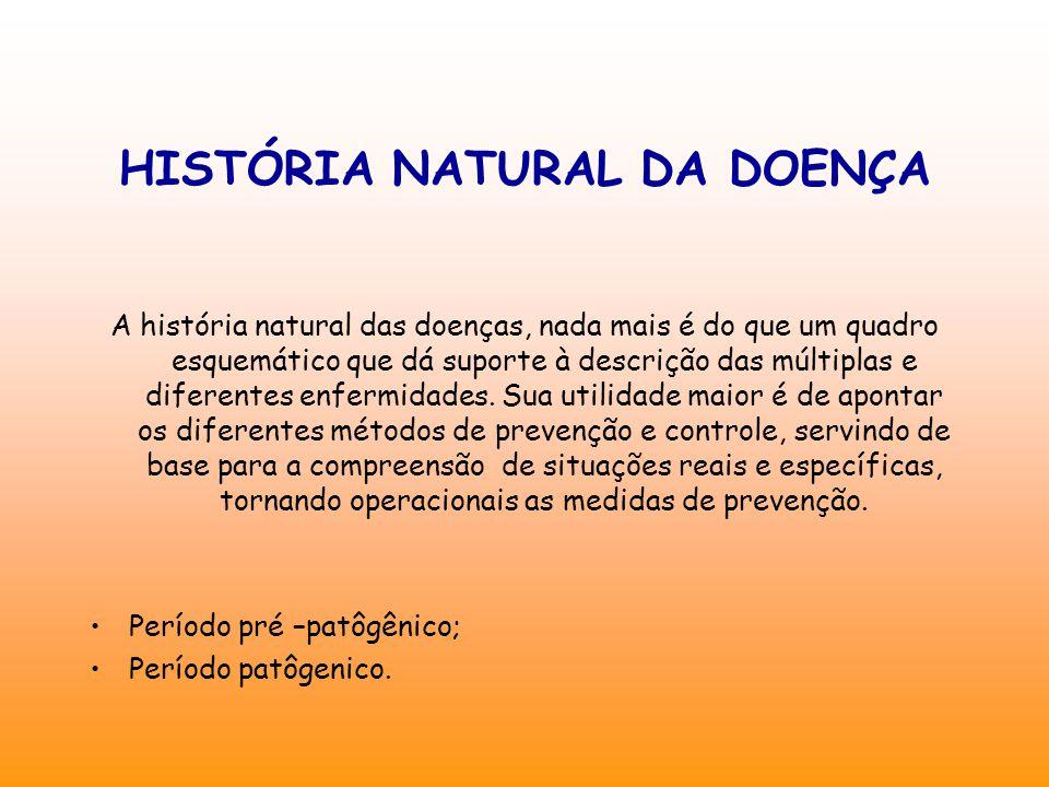 A história natural das doenças, nada mais é do que um quadro esquemático que dá suporte à descrição das múltiplas e diferentes enfermidades.