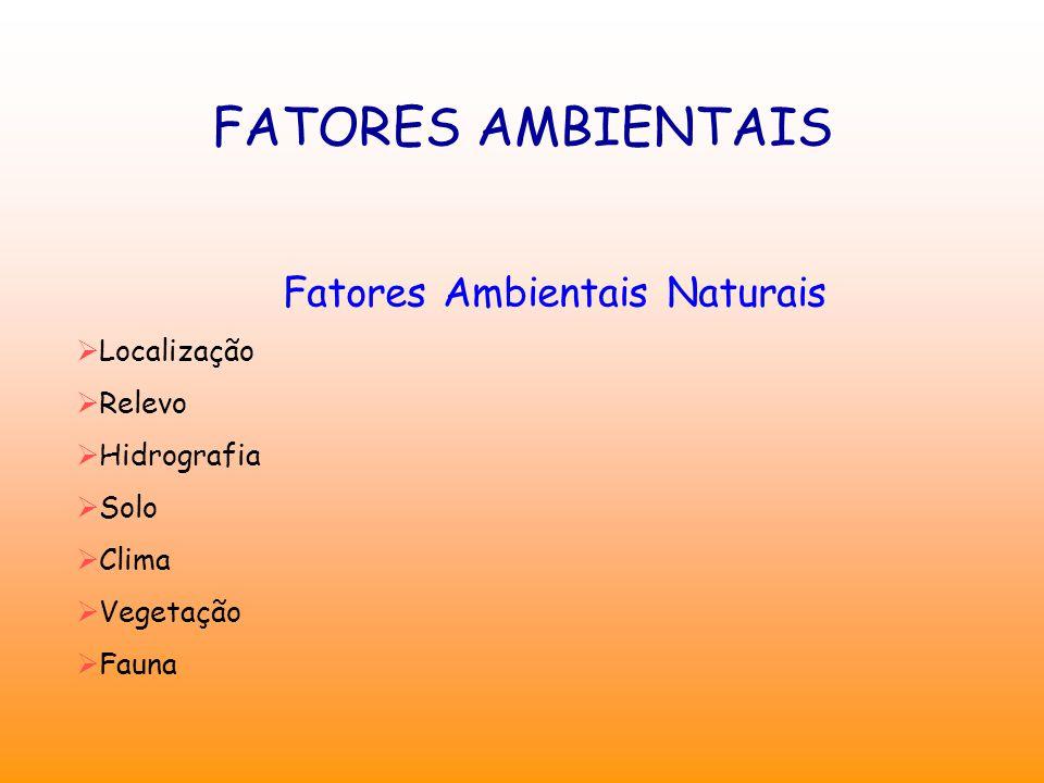 FATORES AMBIENTAIS Fatores Ambientais Naturais  Localização  Relevo  Hidrografia  Solo  Clima  Vegetação  Fauna
