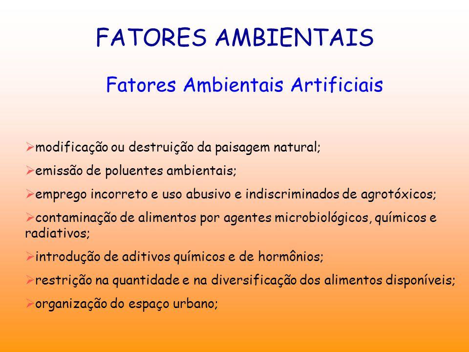 FATORES AMBIENTAIS Fatores Ambientais Artificiais  modificação ou destruição da paisagem natural;  emissão de poluentes ambientais;  emprego incorr