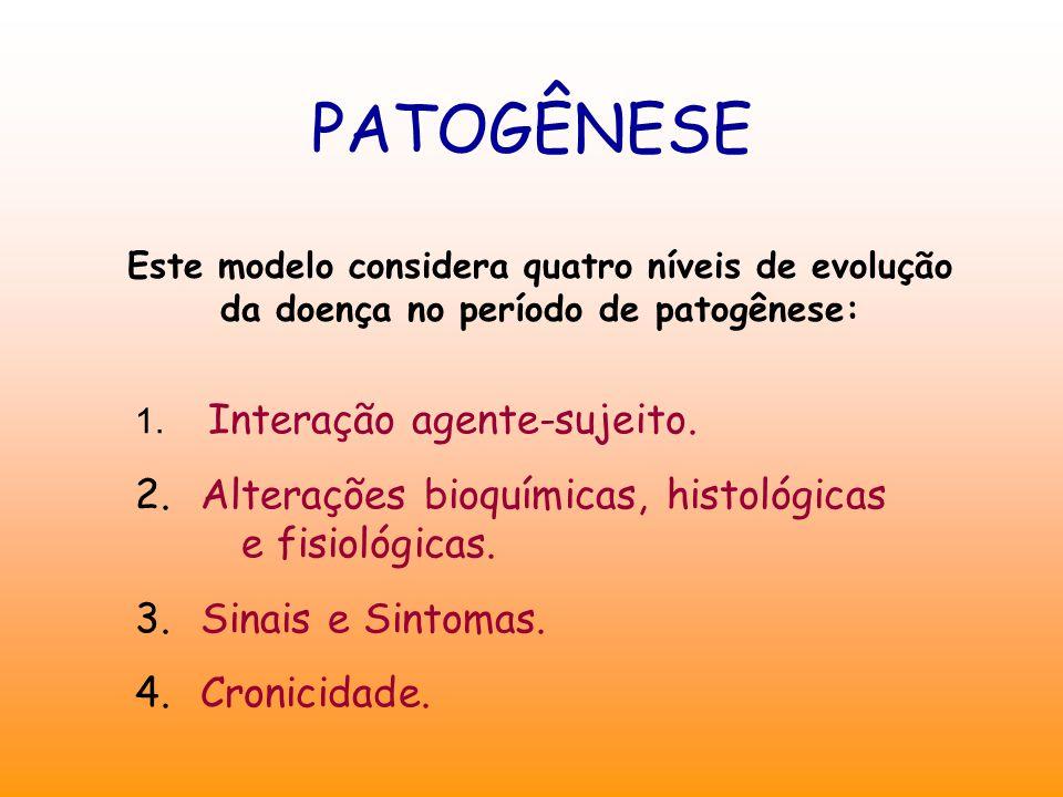 PATOGÊNESE Este modelo considera quatro níveis de evolução da doença no período de patogênese: 1. Interação agente-sujeito. 2. Alterações bioquímicas,