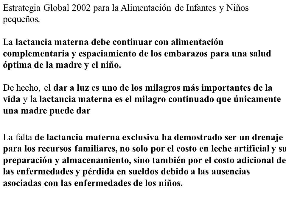 Estrategia Global 2002 para la Alimentación de Infantes y Niños pequeños. La lactancia materna debe continuar con alimentación complementaria y espaci