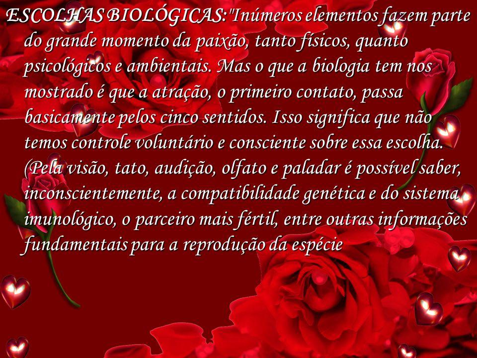 Trabalho apresentado por: Rafael C. G. Bassi de Lima – nº: 11 José Carlos.S. Loureiro – n°:05