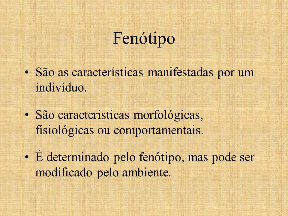 Conceitos Prévios j) Fenótipo É a aparência física de um organismo.