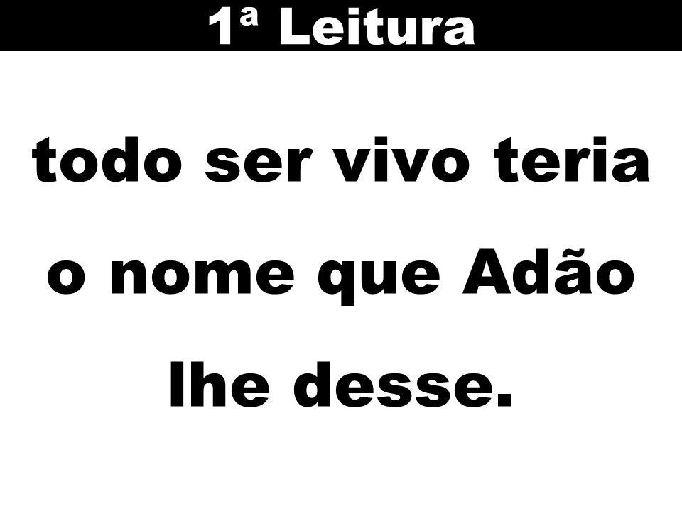 todo ser vivo teria o nome que Adão lhe desse. 1ª Leitura