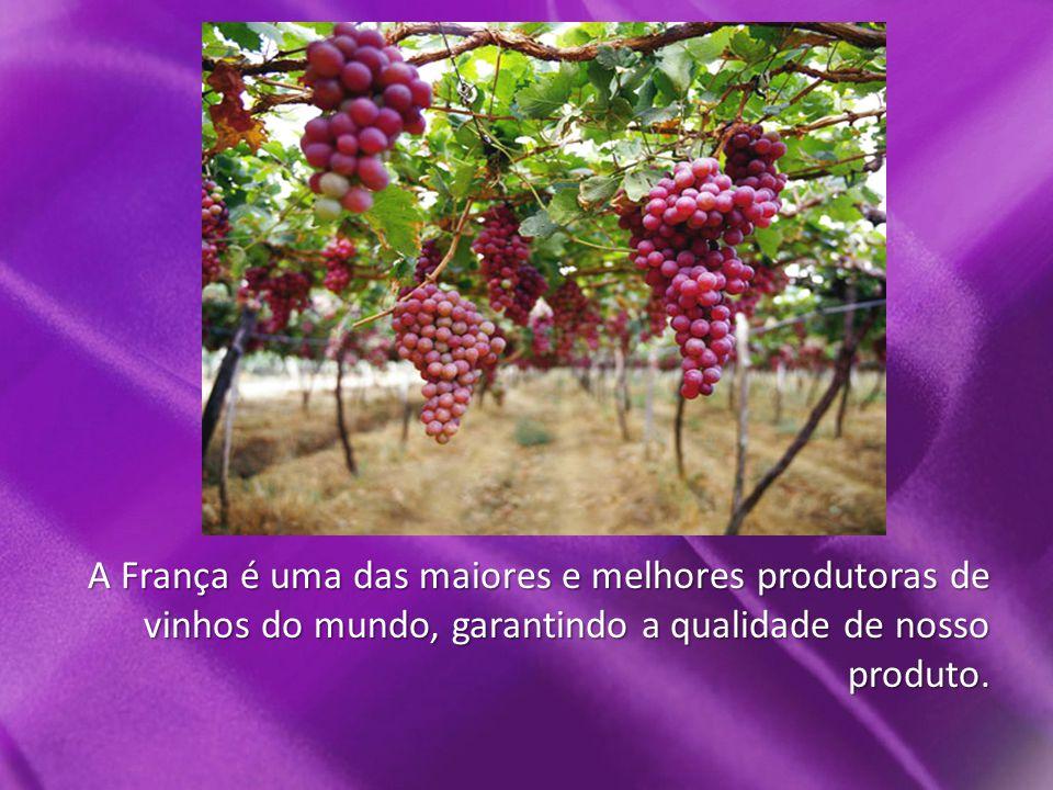 A França é uma das maiores e melhores produtoras de vinhos do mundo, garantindo a qualidade de nosso produto.
