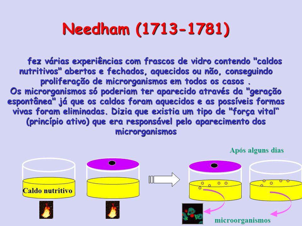 Needham (1713-1781) fez várias experiências com frascos de vidro contendo caldos nutritivos abertos e fechados, aquecidos ou não, conseguindo proliferação de microrganismos em todos os casos.
