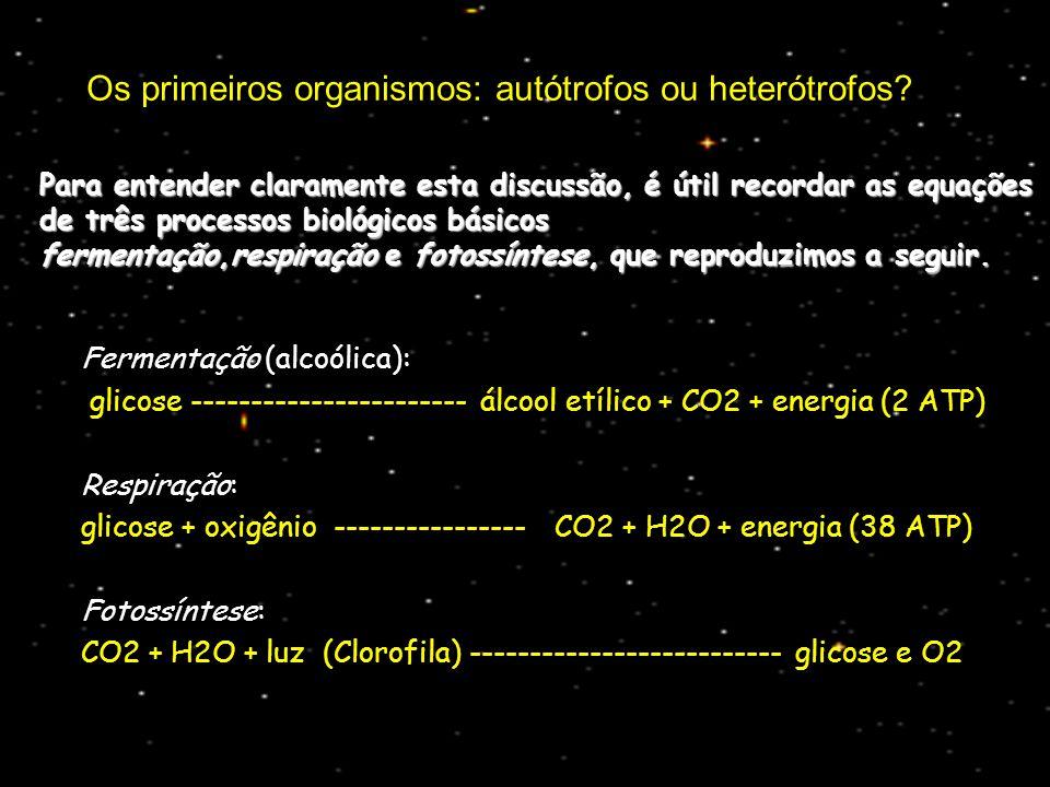 Os primeiros organismos: autótrofos ou heterótrofos.