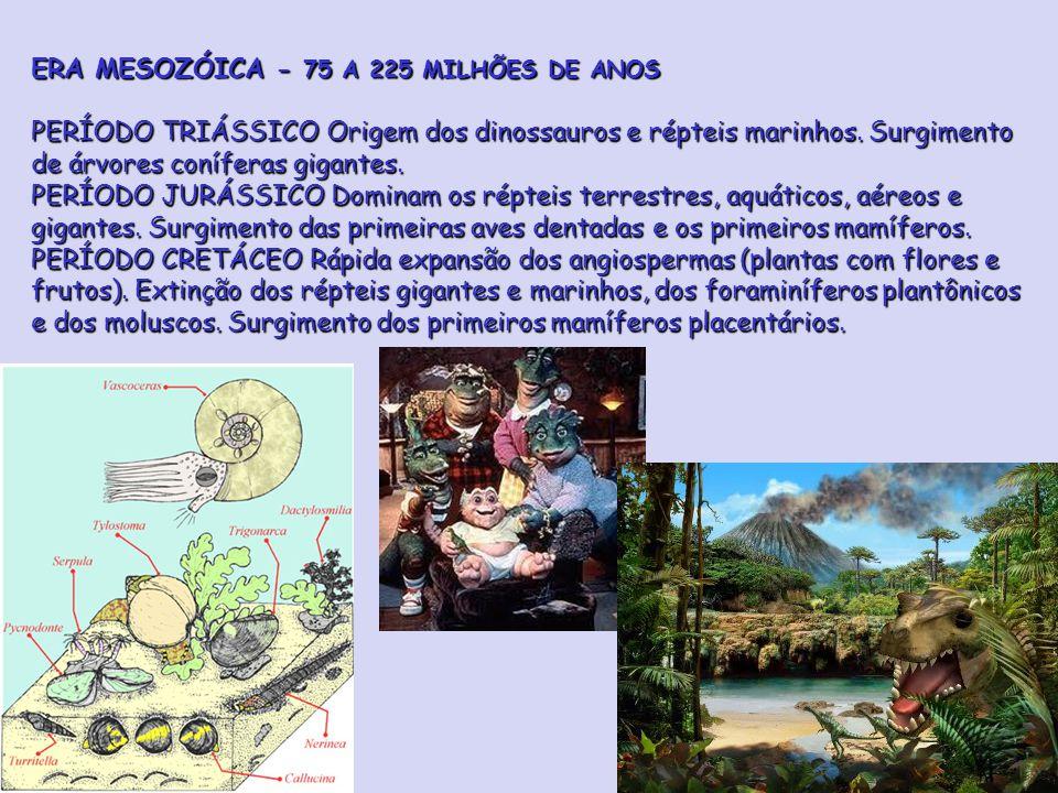 ERA MESOZÓICA - 75 A 225 MILHÕES DE ANOS PERÍODO TRIÁSSICO Origem dos dinossauros e répteis marinhos.