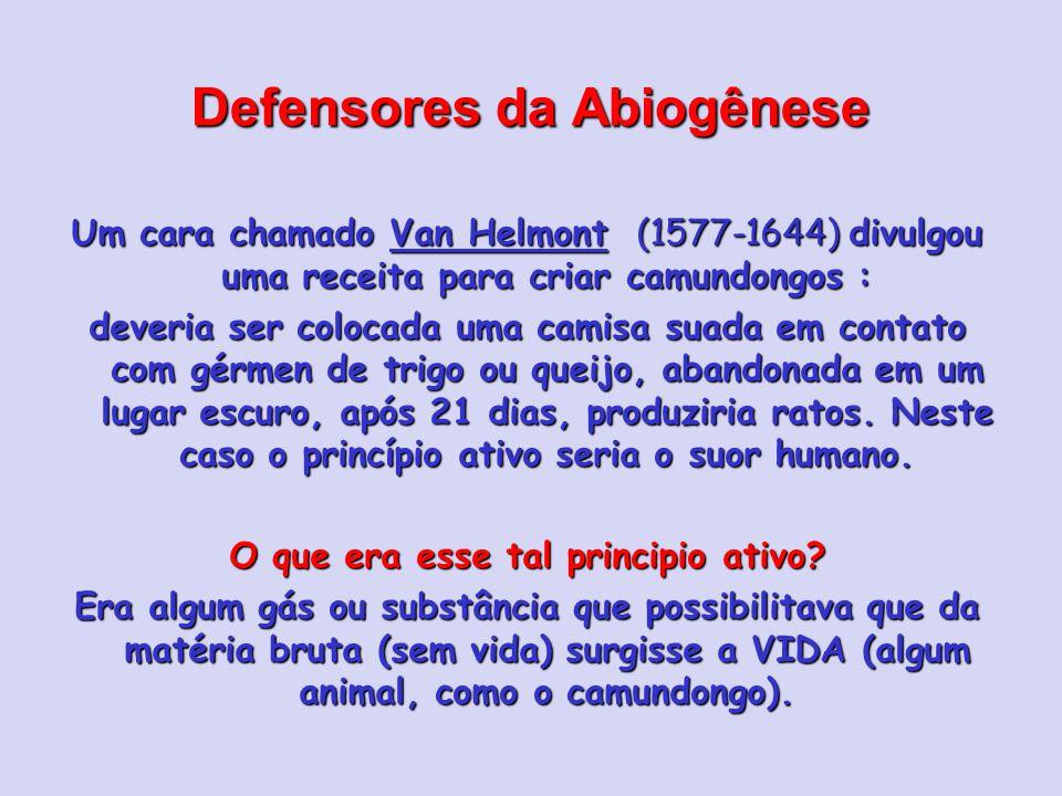 Defensores da Abiogênese Um cara chamado Van Helmont (1577-1644) divulgou uma receita para criar camundongos : deveria ser colocada uma camisa suada em contato com gérmen de trigo ou queijo, abandonada em um lugar escuro, após 21 dias, produziria ratos.
