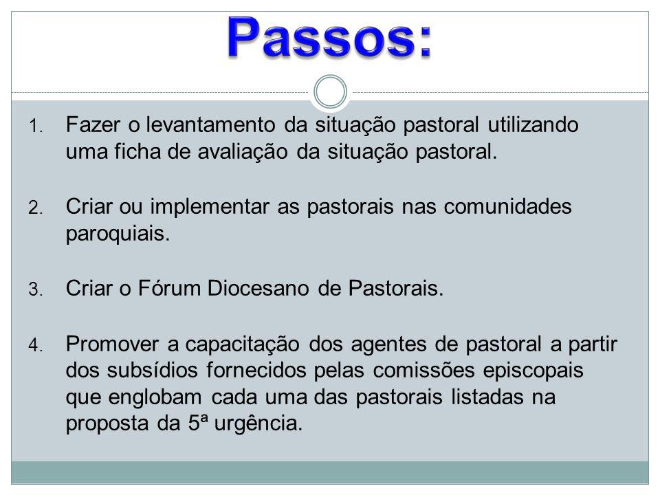 1. Fazer o levantamento da situação pastoral utilizando uma ficha de avaliação da situação pastoral. 2. Criar ou implementar as pastorais nas comunida