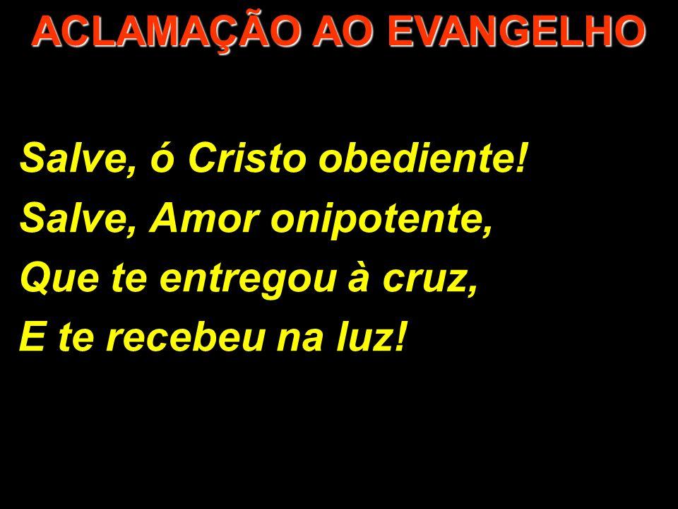 Salve, ó Cristo obediente! Salve, Amor onipotente, Que te entregou à cruz, E te recebeu na luz! ACLAMAÇÃO AO EVANGELHO