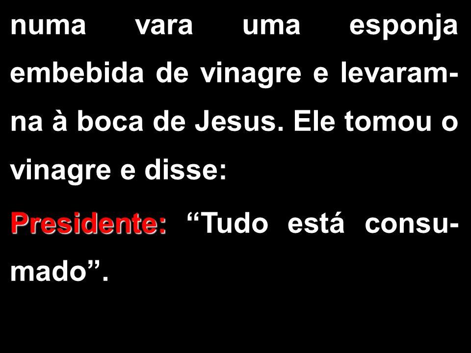 """numa vara uma esponja embebida de vinagre e levaram- na à boca de Jesus. Ele tomou o vinagre e disse: Presidente: Presidente: """"Tudo está consu- mado""""."""