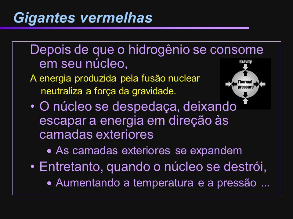 Gigantes vermelhas Depois de que o hidrogênio se consome em seu núcleo, A energia produzida pela fusão nuclear neutraliza a força da gravidade. O núcl