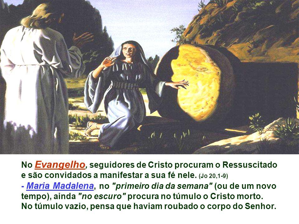 No Evangelho, seguidores de Cristo procuram o Ressuscitado e são convidados a manifestar a sua fé nele.