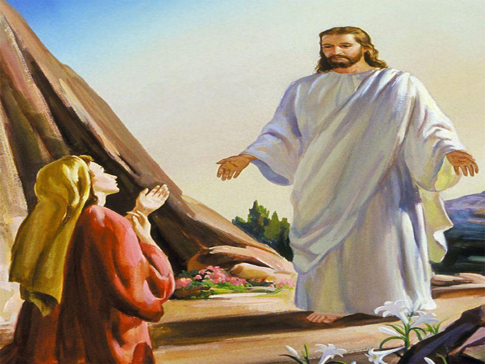 No Evangelho, seguidores de Cristo procuram o Ressuscitado e são convidados a manifestar a sua fé nele. (Jo 20,1-9) - Maria Madalena, no