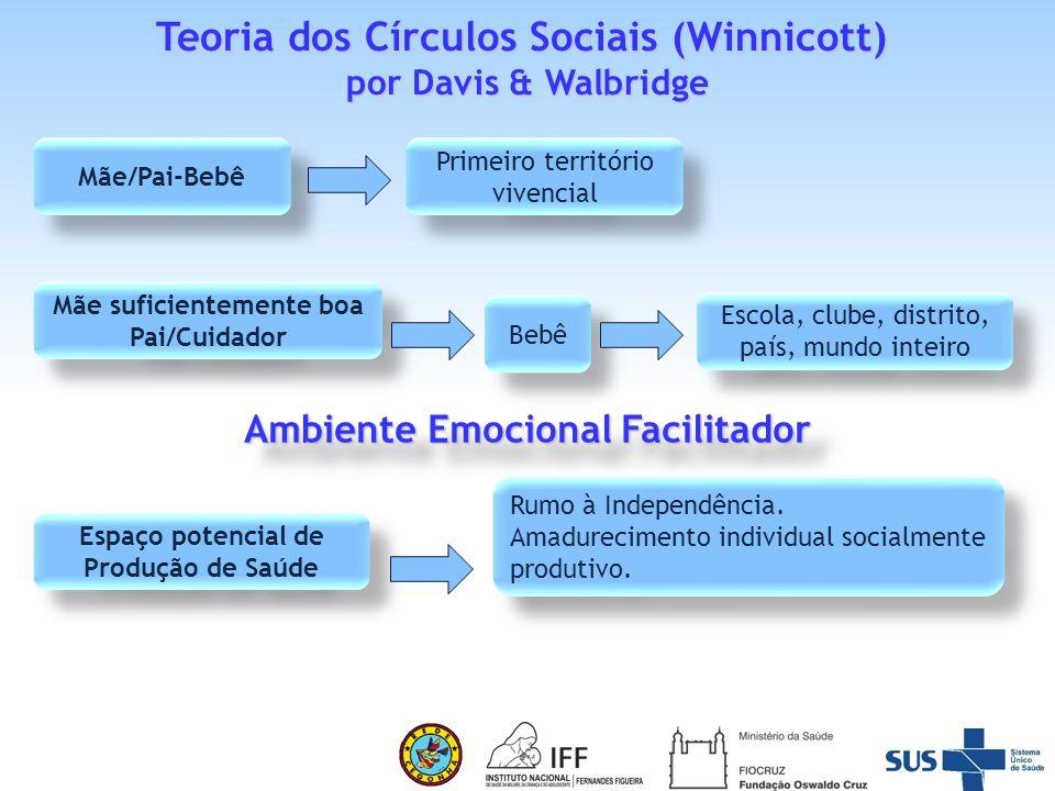A construção da Pesquisa – intervenção EBBS : uma inovação.