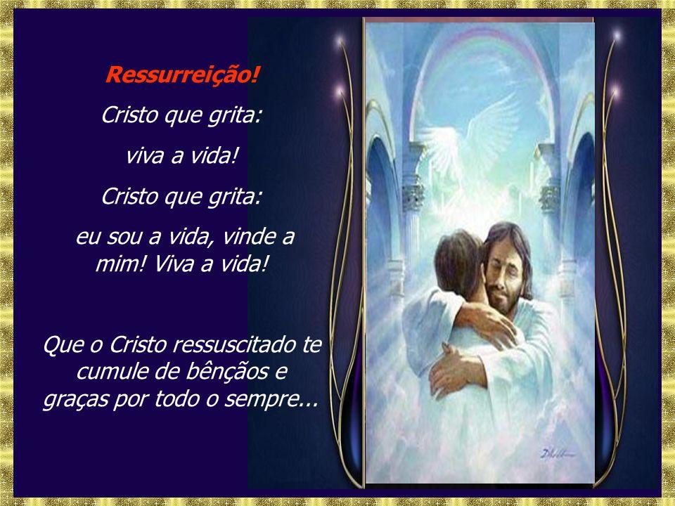 Ressurreição.Cristo que grita: viva a vida. Cristo que grita: eu sou a vida, vinde a mim.