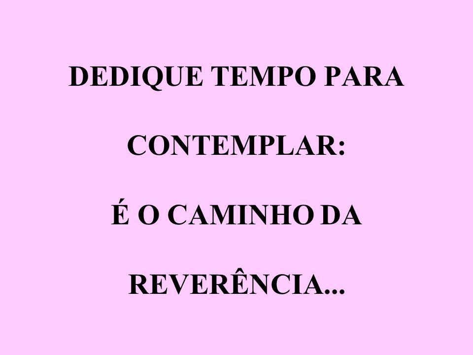 DEDIQUE TEMPO PARA CONTEMPLAR: É O CAMINHO DA REVERÊNCIA...